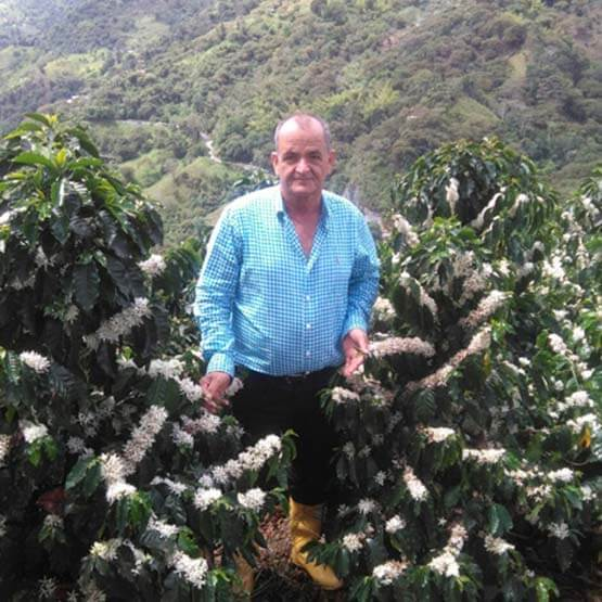 Excelso Finca Palmichal Coffee